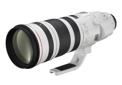 EF200-400mm f/4L IS USM Extender 1.4x