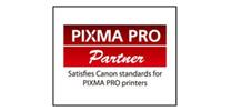 PIXMA PRO-1